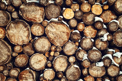 Catasta di legna in neve Fotografia Stock