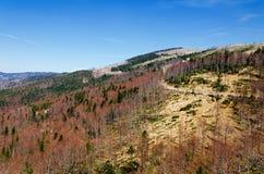 Catastrophe écologique Photos stock
