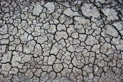 Catastrophe de sécheresse Photos libres de droits