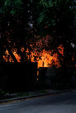 Catastrophe du feu Image stock
