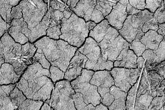 Catastrophe environnementale Réchauffement global Terre criquée sèche Sécheresse et manque d'humidité dans le sol images libres de droits