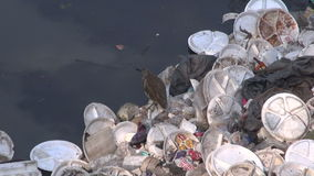 Catastrophic water pollution in Agra river, India stock footage