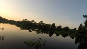 Catatumbo River, the tropical forest and jungle. Timelapse from the boat view of the Catatumbo River to the Maracaibo lake, the tropical forest and jungle near stock footage