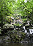 Catawba Falls. A waterfall in a mountain forest Stock Photo