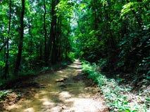 Catawba Trail Stock Image