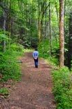 Catawba Trail Solitude Stock Photos