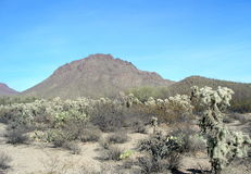 Catback Mountain Arizona Stock Photo