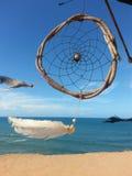 Catcer rêveur avec la configuration blanche sur la plage exotique photos libres de droits
