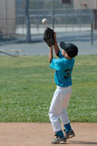 Catch. Ing a fly ball Stock Photography