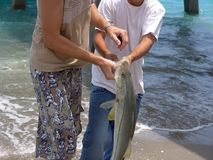 Catch of the Day. Two boys holding their catch, fish Royalty Free Stock Photo