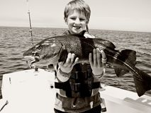 Boy catches fish stock photos