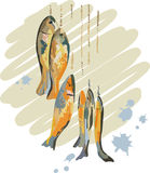 Catch of Fish. A group of freshly caught fish stock illustration