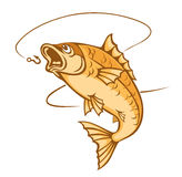 Catch a fish. Catching fish on hook for fishing sports dsign Stock Image