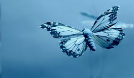 Butterflies on a blue background. Artificial butterfly in bright blue background Stock Photography
