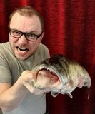 Catched Pike-Perch Stock Photography
