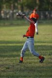 Catching the Ball. Little league player catching a baseball Royalty Free Stock Image