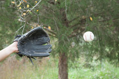 Catching a Ball Stock Photography