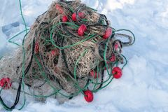 Catching fish with fishing net outdoor activities in winter time. Catching fish with fishing net outdoor activities in winter time royalty free stock photography