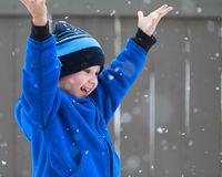 Catching snowflakes royalty free stock image