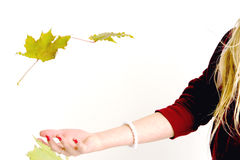 Catching on to fall. A girl catching falling maple leaf's Royalty Free Stock Image