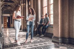 Catching up before the next class.Group of confident students standing together and chatting on the university hall.  royalty free stock images