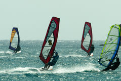 Catching the wind. A group of windsurfers at Rhodes, Greece caught wind and waves at the right moment Stock Photos