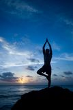 Catching the YOGA balance Royalty Free Stock Photo