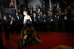 Cate Blanchett Royalty Free Stock Photography