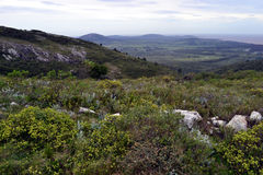 从Catedral小山的看法 库存图片
