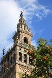 Catedral & La Giralda, Sevilha Foto de Stock Royalty Free