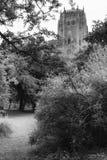 Catedral anglicana Imagem de Stock Royalty Free
