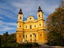 Catedral católica la suposición de la Virgen María bendecida en Oradea, el condado de Bihor, Rumania Imagenes de archivo