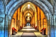 Catedral da aprendizagem fotos de stock royalty free