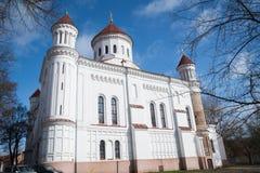 A catedral da mãe a mais pura do deus, Vilnius imagens de stock royalty free