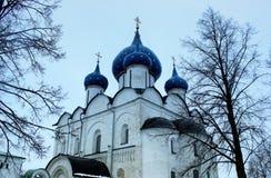 Catedral da natividade do Virgin em Suzdal no close up da estação do inverno com árvores Fotografia de Stock