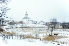 Catedral da natividade em Suzdal no inverno Rússia fotos de stock royalty free