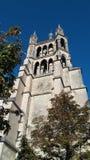 Catedral da opinião de Lausana Fotografia de Stock Royalty Free
