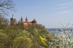 Catedral da Virgem Maria abençoada de Masovia, em Plock foto de stock
