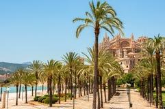 Catedral de Мальорка, Palma de Mallorca, Испания Стоковое Фото