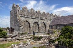 Catedral de Ardfert - Kerry do condado - Irlanda Fotografia de Stock