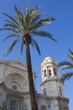 Catedral de Cádiz con la palma decorativa Imagen de archivo libre de regalías