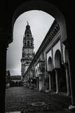 Catedral de Córdova Imagens de Stock