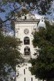 Catedral de caracas, venezuela imagem de stock royalty free