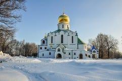 A catedral de Fyodorovsky Imagem de Stock Royalty Free