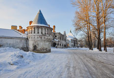 A catedral de Fyodorovsky Fotografia de Stock Royalty Free