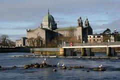 Catedral de Galway en Irlanda fotografía de archivo