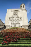 Catedral de Girona Foto de archivo