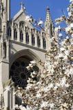 Catedral de la C.C. de Washington Imagenes de archivo