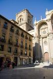 Catedral de la encarnación, Granada Fotografía de archivo