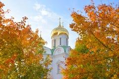Catedral de la ortodoxia de St Catherine en Tsarskoye Selo fotografía de archivo libre de regalías